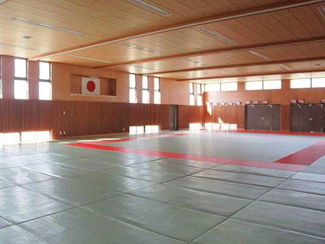 Stage of Olympic and Tatami