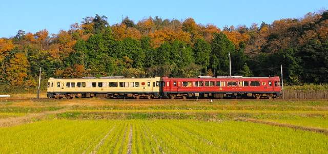 Limited train with Tatami flooring