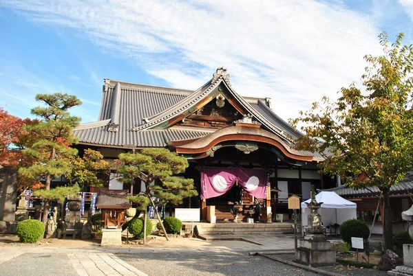 "Shojokein temple in Kyoto  The history and origin of  ""Tatami temple"""
