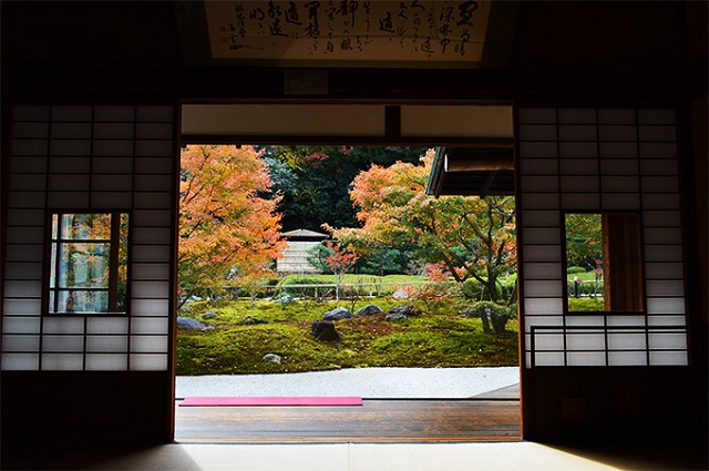 The autumn leaves, like the paintings, from the Japanese room The silent autumn in Chouju-ji Temple, Kamakura