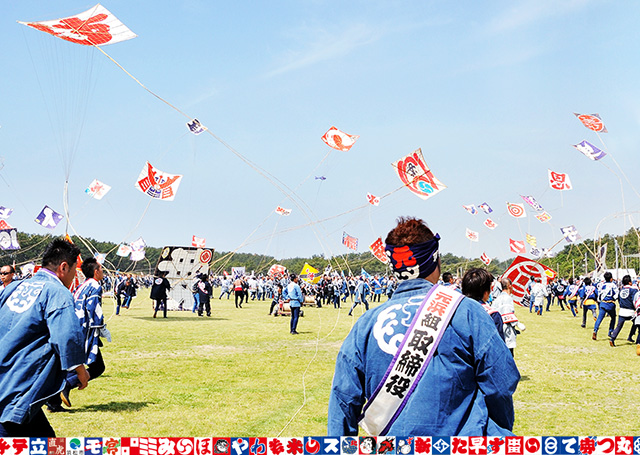 "Kites glowing with the blue sky in May and ""Shusse-jo Castle"", Hamamatsu-jo Castle Excited ""Hamamatsu Festival"" by the citizens"