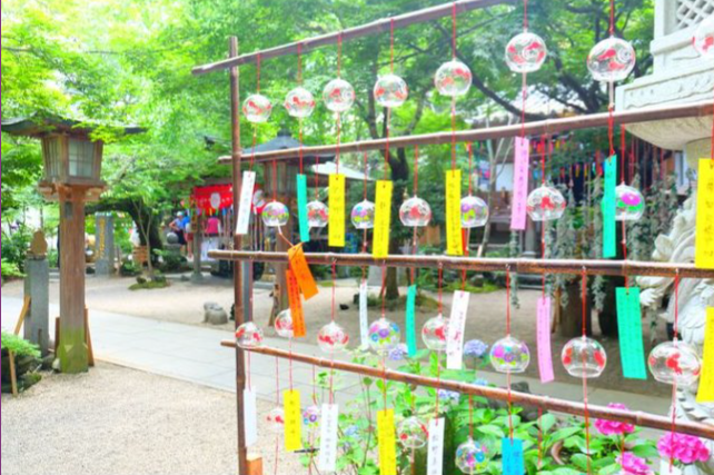 """A popular tourist spot to feel Japan Vol.37 """"Frog Temple"""" with Japanese atmosphere and smiles A lot of goods on the tatami and the wind-bell's sound"""