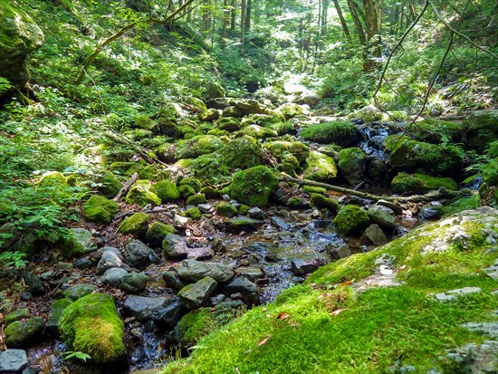 "Japanese popular mountains, want to go at least once Mt. Mitake in Ohme, Tokyo  Staying in ""Shukubo"" that has tatami floored Japanese rooms, and ""Musashi Mitake Shrine"" that is a power spot to see the marvelous view"