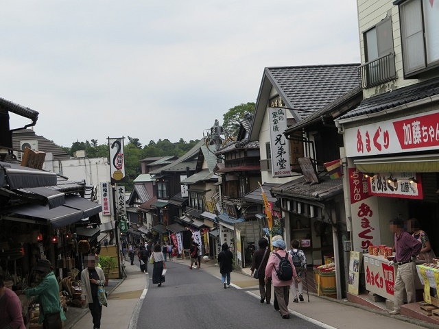 Narita Transit & Stay Program Seeing the very Japanese view in Naritasan Shinsho-ji Temple and the temple town