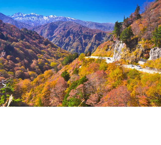 Popular tourist spots to feel Japan   Vol.44 The autumn leaves, shining in the blue sky, and the Japanese houses with rafter roofs The marvelous view during the autumn season The place of the world heritage, Shirakawagou