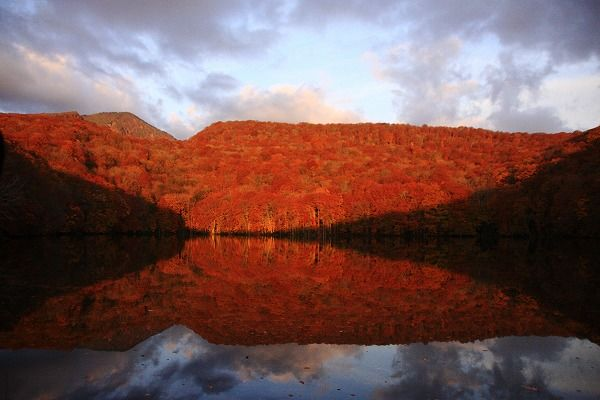 Popular tourist spots to feel Japan Vol.45 Towada in Aomori The marvelous view of the autumn leaves shined with the water surface in Lake Tsuta-numa and Tsuta-Onsen Hot Spring