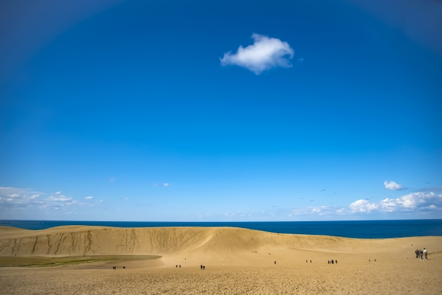 "Attracted by a national monument ""Tottori Sand Dunes"" An artwork ""sand sculpture"", flowers of scallions, and the atmosphere of the historic hot springs"